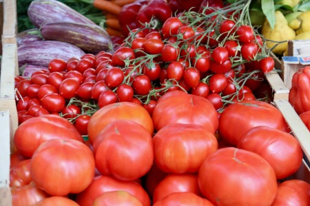 Tomatoes that look absolutely amazing