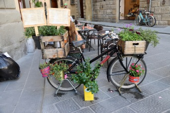 Bike with herbs