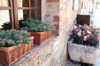 Flowers in the square - Monteriggioni