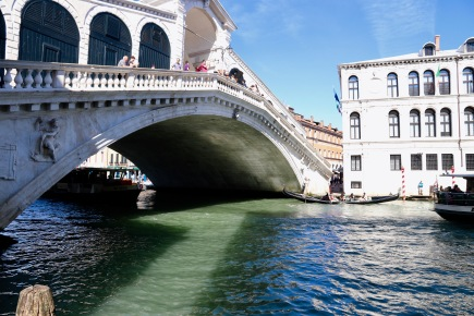 A gorgeous view of the Rialto Bridge