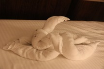 Our towel animal for the evening courtesy of Eugene