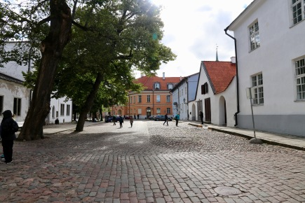 Building and scenes from Tallinn's Upper Town