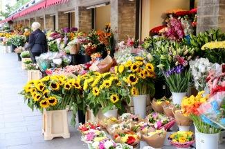 Lower Town Tallinn - flower stalls