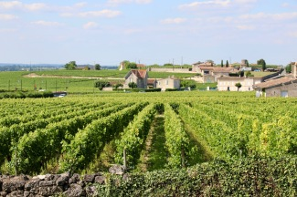 Views from around St Emilion