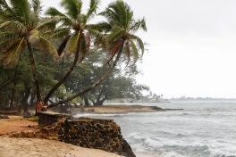Hawaiian coast line