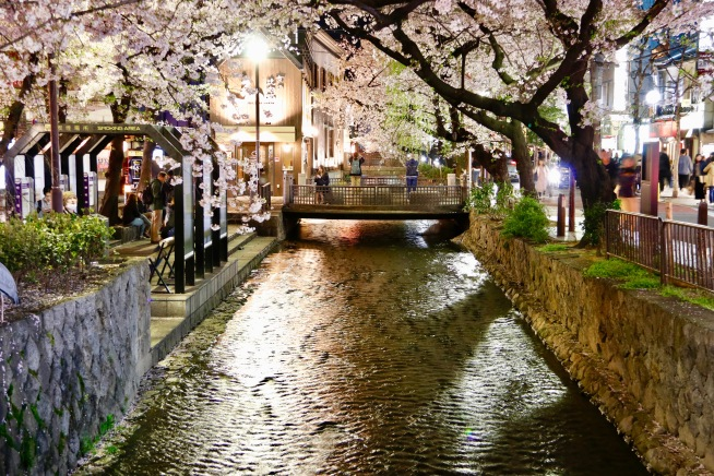 Canal in Pontocho, Kyoto