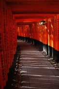 The tori gates behind the Fushimi Inari Shrine, Kyoto