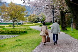 Walking along the Honkawa River, Hiroshima