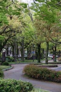 Central Park, Hiroshima