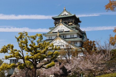 Cherry blossoms and Osaka Castle, Osaka