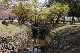 Gardens in Nara Park, Japan