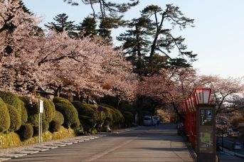 Outside Kenrokuen Gardens, Kanazawa Castle Park, Kanazawa, Japan