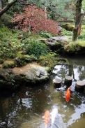 Gardens at Nomura Samurai House, Kanazawa, Japan
