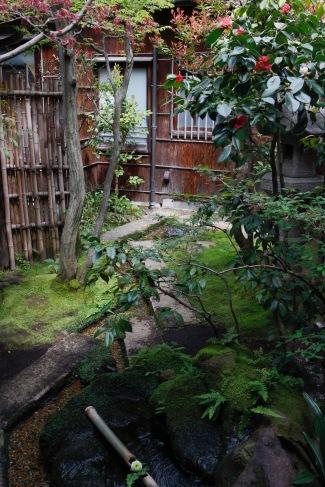 A different garden at Nomura Samurai House, Kanazawa, Japan
