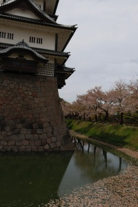 Cherry blossoms and the Kanazawa watch tower, Kanazawa, Japan