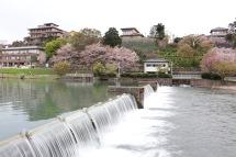 Saigawa River, Kanazawa, Japan
