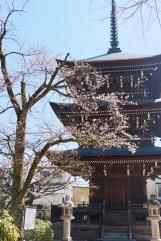 Hida Kokubunji Temple, Takayama, Japan